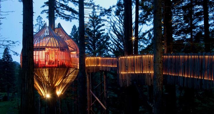 Redwoods Treehouse- בית העץ